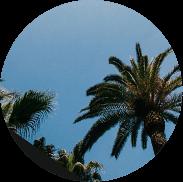 Acheter à Vallauris / Golfe Juan